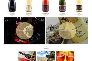 Champagne Julie Nivet : page d'accueil